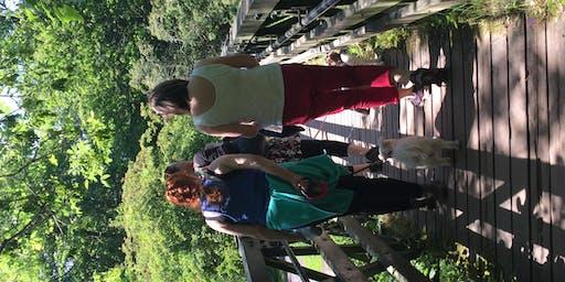 Netwalking Scotland in Roslin Glen