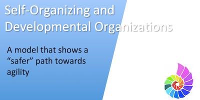 Self-Organizing and Developmental Organizations