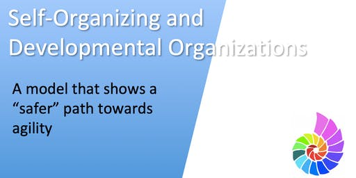 Self-Organizing and Developmental Organizations