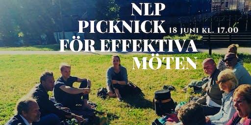 NLP Picnic för Effektiva Möten
