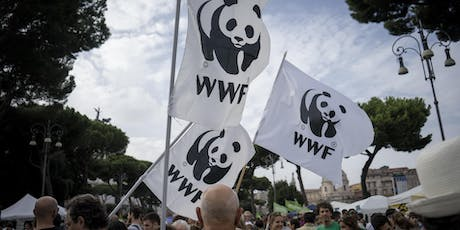 Fight for Your World - WWF's Mass Lobby Activism Brunch tickets