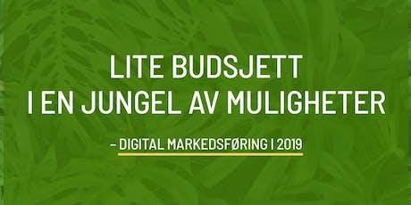 Digital markedsføring: Lite budsjett, i en jungel av muligheter tickets