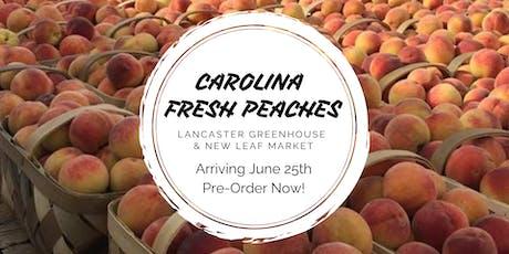 Fresh South Carolina Peaches Arriving! tickets