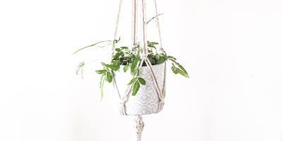 Macrame Plant Hanger Workshop with Oak + Wonder