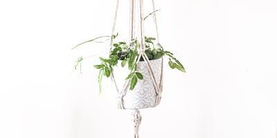 Macrame Plant Hanger Workshop with Oak +wonder