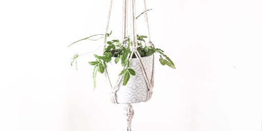 Macrame Plant Hanger Workshop with Oak +wonder
