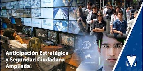 ANTICIPACIÓN ESTRATÉGICA Y SEGURIDAD CIUDADANA AMPLIADA entradas