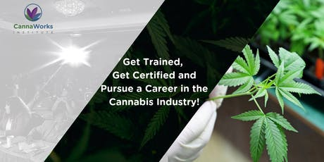 CLEARWATER| CannaWorks Institute & Cannaworks Staffing | 13 de Julio 2019 | tickets