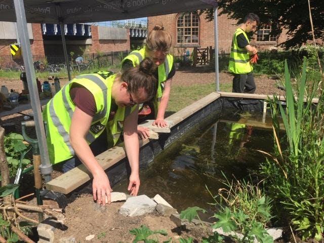 Practical workday, Walthamstow Wetlands, Sat 22nd June 2019 with London Wildlife Trust