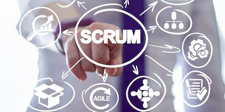 06/07 - Curso preparatório gratuito para as certificações Scrum Essentials, Scrum Master Foundation, Scrum Product Owner Foundation e Lean IT Essentials com Adriane Colossetti ingressos