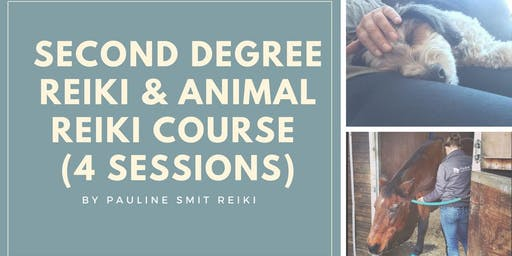 Second Degree Reiki and Animal Reiki course (4 Sessions)
