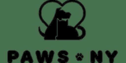 Volunteer Orientation November 5th 2019