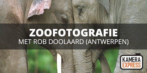 Zoofotografie Antwerpen met Rob Doolaard