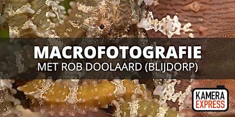 Macrofotografie Diergaarde Blijdorp met Rob Doolaard tickets