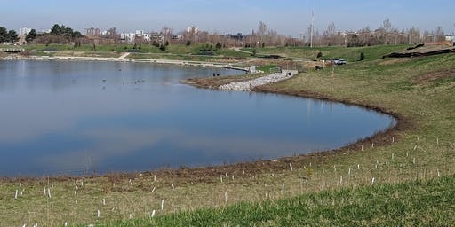 Downsview Park Nature Connection- Water World