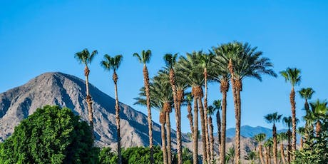 Let's Roam's Palm Springs Scavenger Hunt: An outdoor activities in Palm tickets