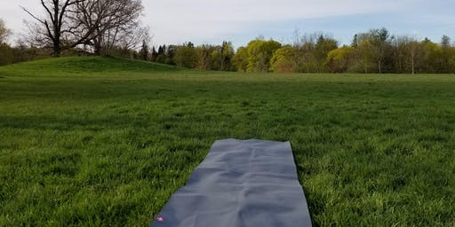 Yoga At Christie Pits Park - With Michelle