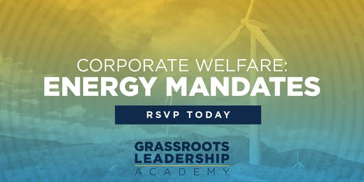 AFP Foundation CO: Insight to Action - Corporate Welfare: Energy Mandates - Grand Junction