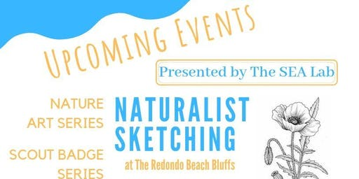 Naturalist Sketching: Seasonal Changes of the Redondo Beach Bluffs