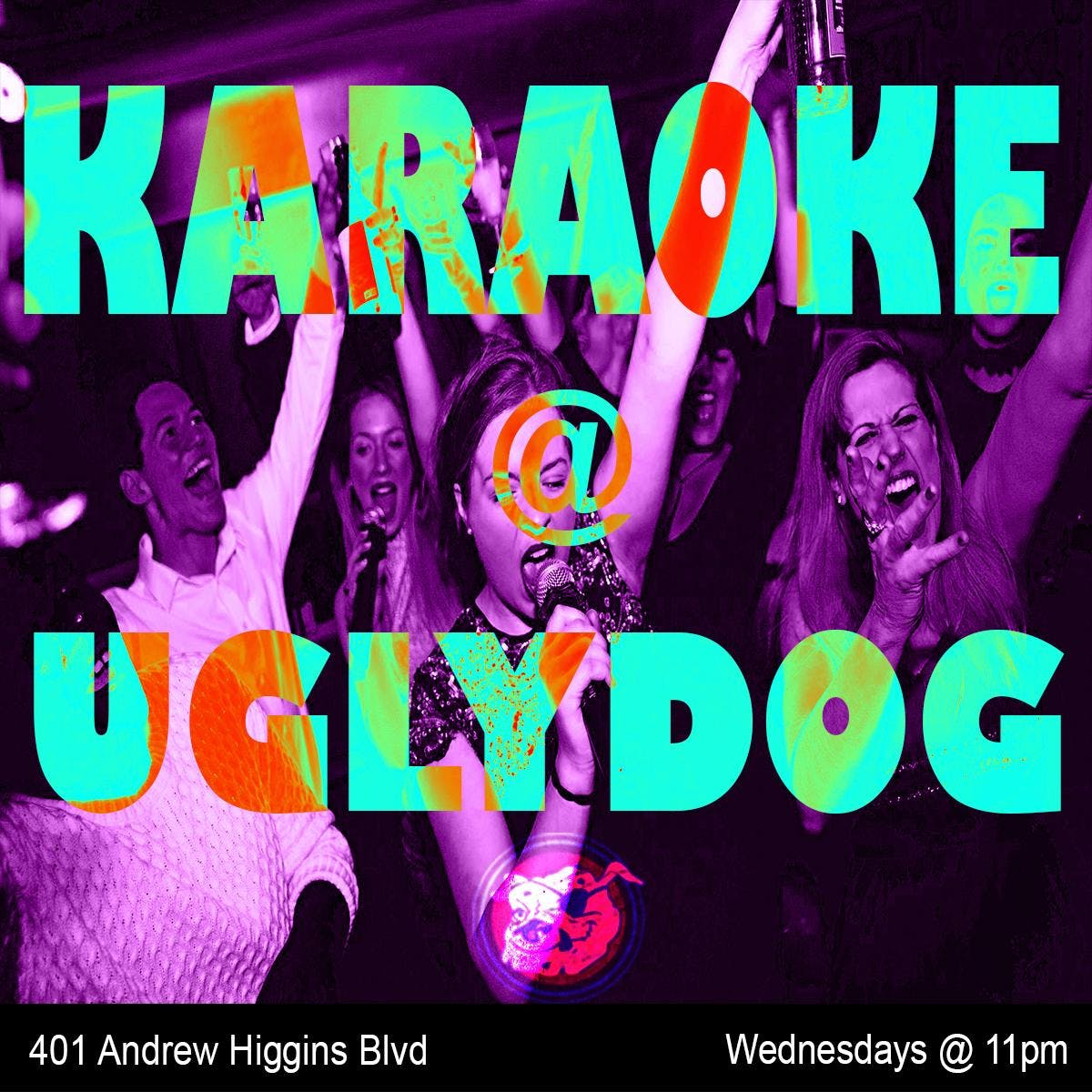Karaoke at Ugly Dog banner