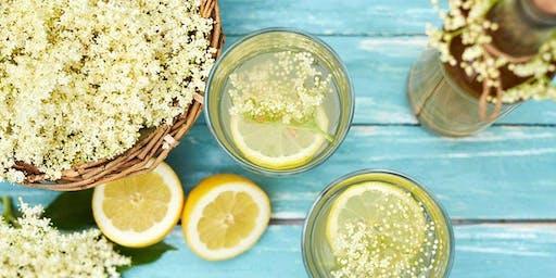 Atelier - Limonade à l'ancienne et infusions pétillantes