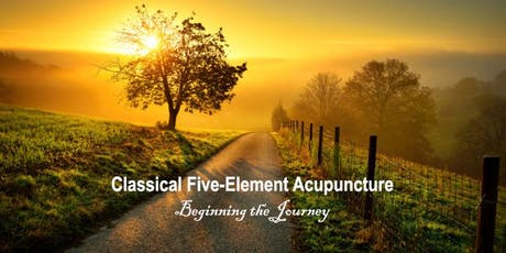 Classical Five-Element Acupuncture: Beginning the Journey tickets