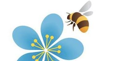 Bumblebee Talk