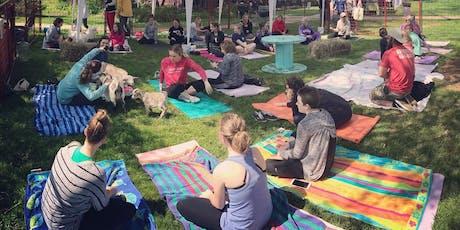 Feels Like OM Goat Yoga at BAYarts Farm and Art Market tickets
