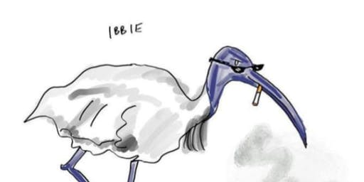 Ibis Reunion 1999