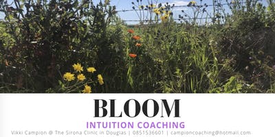 BLOOM: Intuition coaching (Intro: single session)
