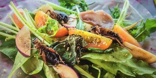 FUTURE ROOTS Fermentation und Insekten Küche Erfahren