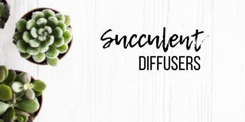 Succulent Diffusers