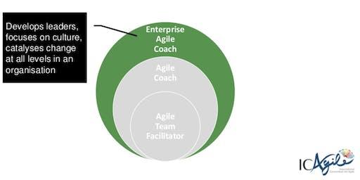 Certified Enterprise Agile Coaching Masterclass (ICP-CAT) London