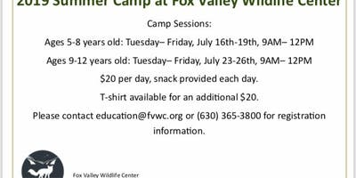 Wildlife Day Camp Ages 5-8