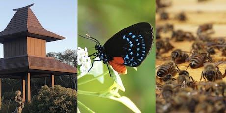 Bats, Bees and Butterflies Reception tickets
