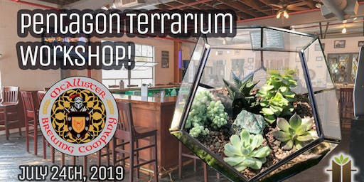 Pentagon Terrarium Workshop at McAllister Brewing Company