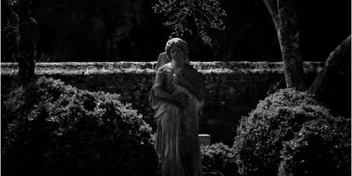Moonlight walk through Blandford Cemetery (June 22)