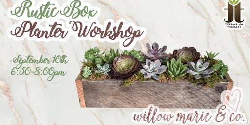 Rustic Succulent Box Workshop at Willow Marie & Co.