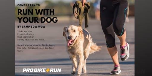Running with Your Dog Clinic - North Park