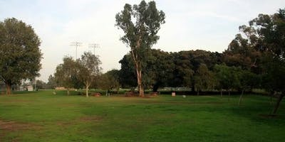 Friday Evenings Slow Flows in Cheviot Hills Park