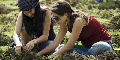 Reforestación sábado 24 de agosto en Tarángo, CDMX