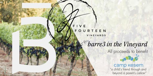 Annual barre3 Eugene in the Vineyard