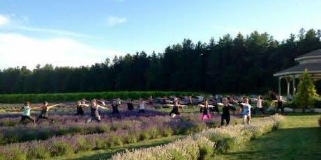 Lavender Yoga  tickets