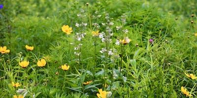 2019 Cleveland Pollinator & Native Plant Symposium