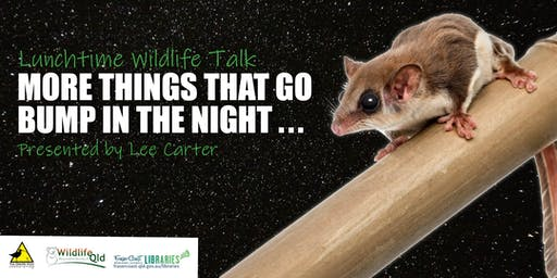 Wildlife Talk - More Things That Go Bump in the Night by Lee Carter - Hervey Bay Library