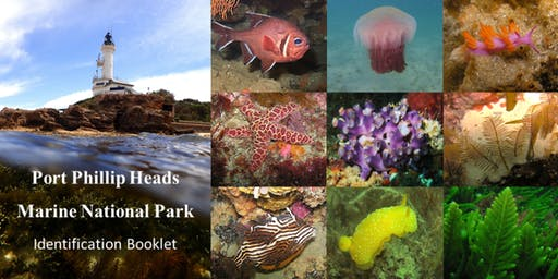 Port Phillip Heads Marine National Park Identification Booklet Launch