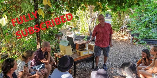 Native Bee Workshop