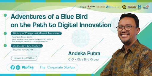 Adventures of a Blue Bird on the Path to Digital Innovation