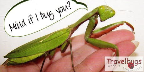 Travel Bugs: Mobile Mini-beasts tickets