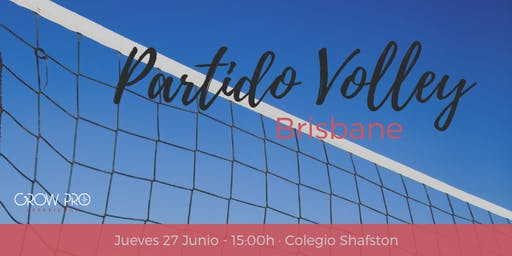 Brisbane | Partido Volley · GrowPro vs Shafston College